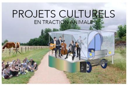 projets culturels en traction animale